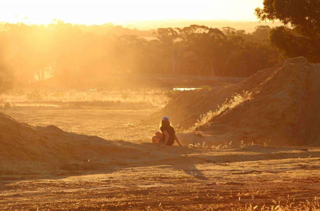 Golden hour in the dust at Whitegum Farm