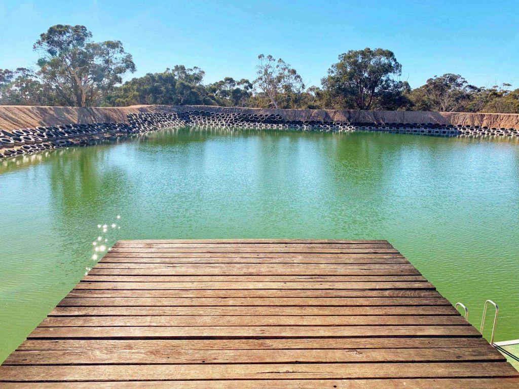Fishing dam at Whitegum Farm Caravan Park