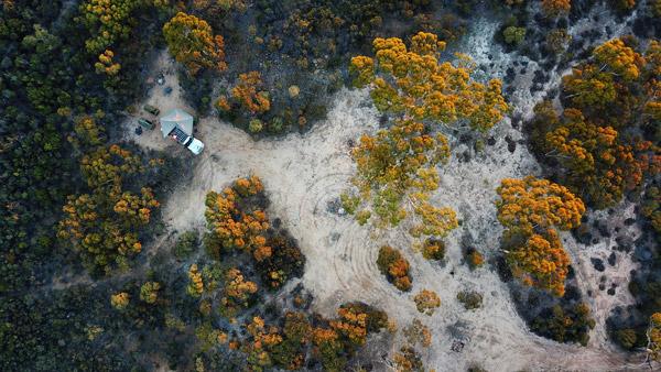 Free Bush Camp Holland Track 4WD