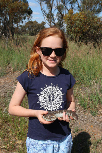 Girl holding bobtail lizard Holland Track